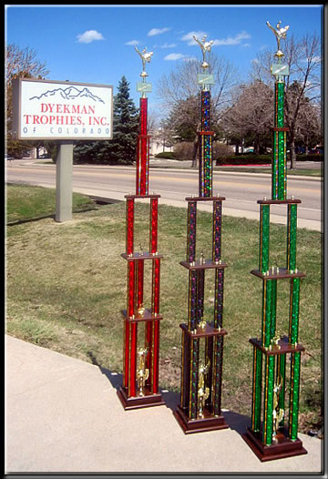 SEO's Martial Arts Grand Champion Trophies 2013.